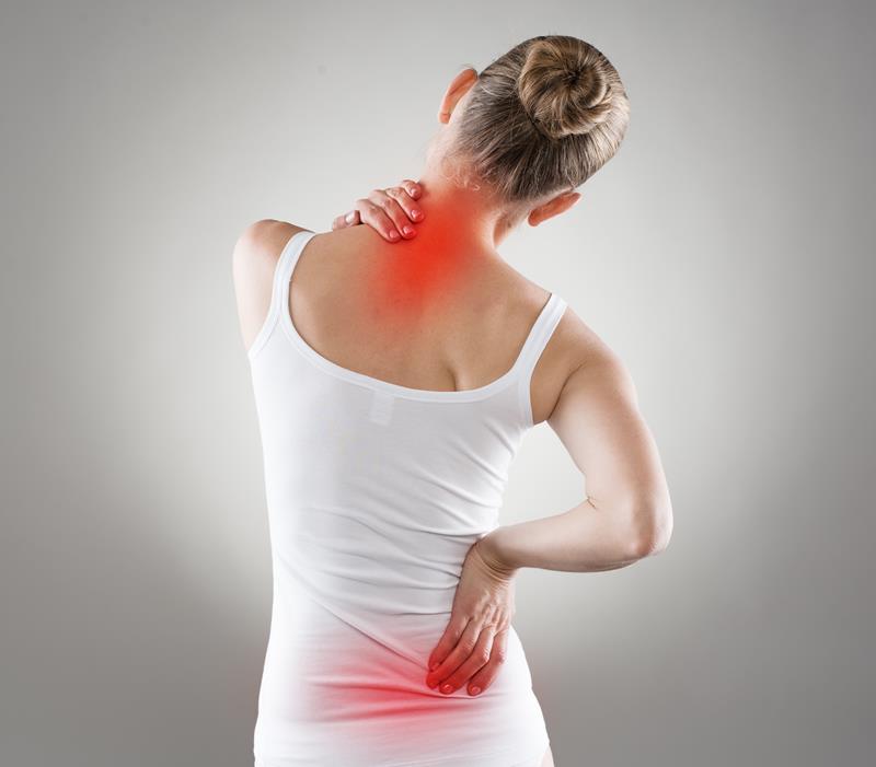 chiropractic services  Gainesville, FL